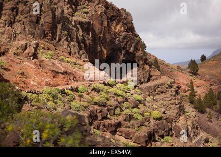 Chemin de randonnée à la vallée Valle Gran Rey, La Gomera, Canary Islands, Spain, Europe Banque D'Images
