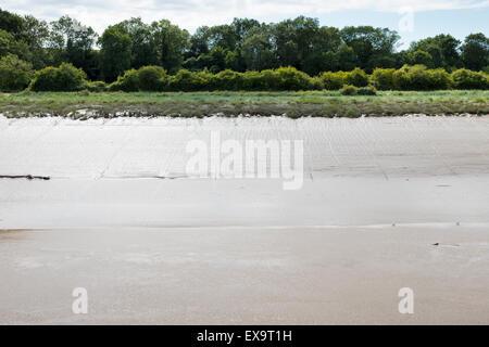 La marée basse, les vasières de roseaux et de bois sur la Rivière Avon en mer Mills à Bristol. Banque D'Images