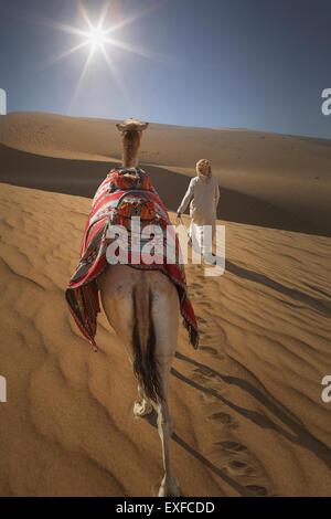 Vue arrière du premier bédouin camel en désert, Dubaï, Émirats Arabes Unis Banque D'Images