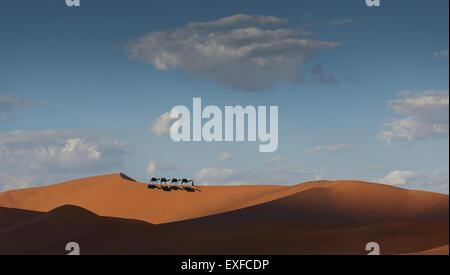 Caravane de chameaux sur l'horizon du désert, Dubaï, Émirats Arabes Unis Banque D'Images