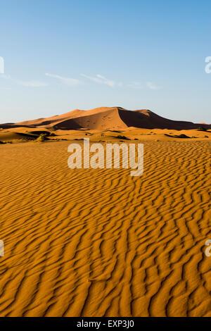 Dunes de sable dans la lumière du matin, Merzouga, Maroc, région de Meknès-Tafilalet Banque D'Images