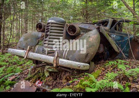 Vieille voiture dans la forêt avec des arbres, à la frontière US-Canada Banque D'Images
