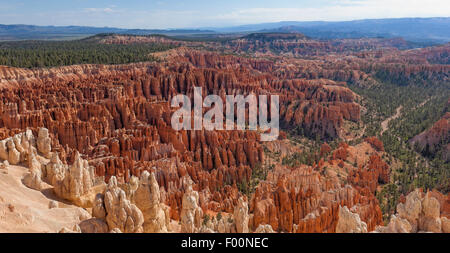 Une autre photo du Parc National de Bryce Canyon - Utah Banque D'Images