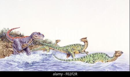 Paléozoologie - Crétacé - Dinosaures - Tarbosaurus attaquer un troupeau d'Amiee - travail d'Art