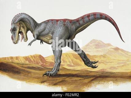 Paléozoologie - Crétacé - Dinosaures - Tarbosaurus (art par Una Fricker)