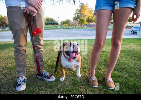 Portrait de bulldog dans parc entre les jambes du jeune couple Banque D'Images