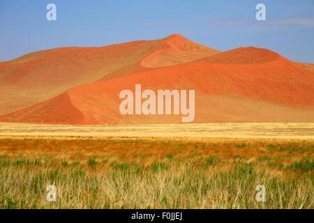 Sossusvlei est un sel et de l'argile pan entouré de hautes dunes rouges, situé dans la partie sud du désert du Namib Banque D'Images