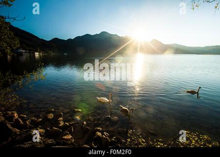 Coucher du soleil sur le lac de Kochel, Bavière, Allemagne Banque D'Images
