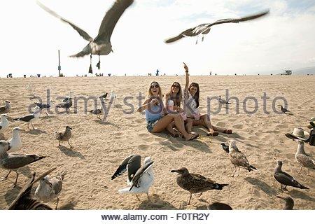 Trois jeunes femmes, assis sur la plage, entouré par les mouettes Banque D'Images