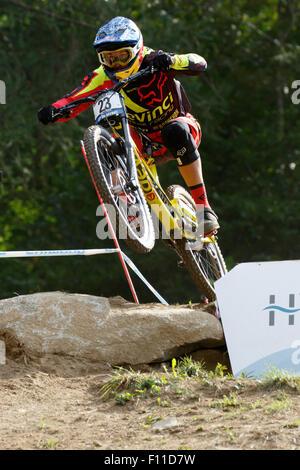 Val di Sole, Italie - 22 août 2015: Global Devinci Racing Team rider, Steve Smith en action pendant la descente Banque D'Images