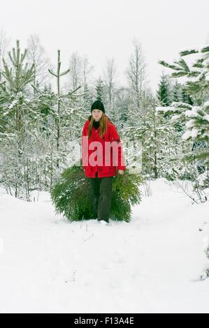 Ramener à la maison un arbre de Noël Banque D'Images