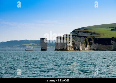 Old Harry Rocks Handfast Point, Studland, à l'île de Purbeck, Dorset, Angleterre, Royaume-Uni, Banque D'Images