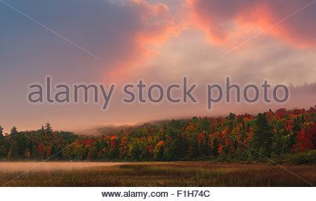 Connery étang dans les Adirondacks State Park, à proximité de Lake Placid dans la partie nord de l'État de New York, Banque D'Images