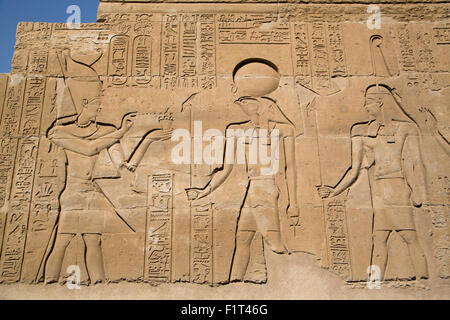 Bas-reliefs sur les murs, Temple de Sobek et Haroeris, Kom Ombo, Egypte, Afrique du Nord, Afrique Banque D'Images