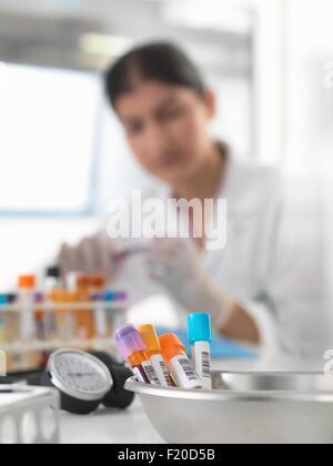 Femme médecin la préparation des échantillons de sang dans les 24 Banque D'Images