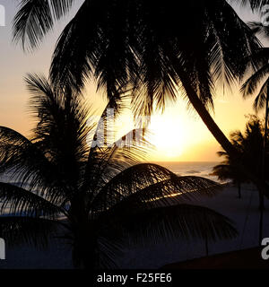 Dover Beach Barbados Coucher du Soleil