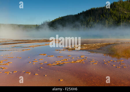 Prisamtic grand printemps, le Parc National de Yellowstone, Wyoming, USA Banque D'Images