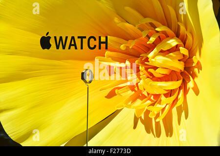 Grand magasin Selfridges affichage fenêtre promotion pour Apple Watch theming sur fond de grandes fleurs colorées Banque D'Images