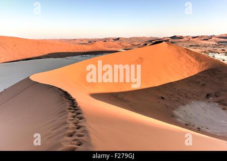 Sossusvlei (parfois écrit Sossus Vlei) est un sel et de l'argile pan entouré de hautes dunes rouges, situé dans Banque D'Images
