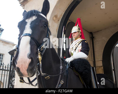 Household Cavalry à Whitehall Banque D'Images