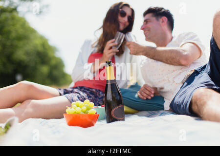 Couple toasting with champagne glasses on picnic blanket Banque D'Images