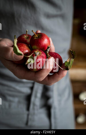 Close-up of man's hand holding apples