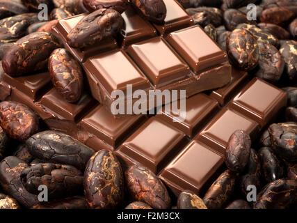 Les fèves de cacao et de chocolat Banque D'Images