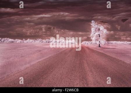 Photo infrarouge d'une route isolée. Banque D'Images