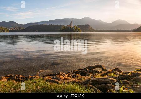 Petite île avec l'Église catholique dans le lac de Bled, en Slovénie, au lever du soleil avec le château et les Banque D'Images