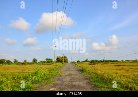 Une étroite route de campagne à travers la verdure sous ciel nuageux Ciel bleu. Banque D'Images