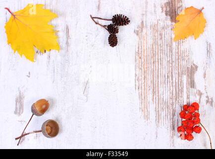 Automne décoration et l'espace de copie de texte sur le vieux fond rustique en bois, feuilles jaunes, rouges Rowan, Banque D'Images