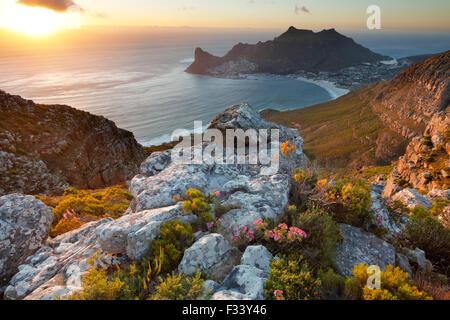 Hout Bay, du Parc National de Table Mountain, Western Cape, Afrique du Sud Banque D'Images