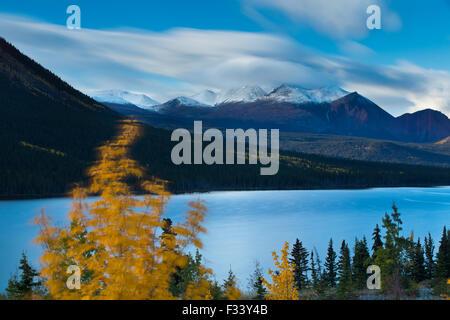 Couleurs d'automne au lac Nares, avec au-delà de Montana Mountain, près de Carcross, au Yukon, Canada Banque D'Images