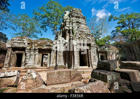 Ruines du temple Ta Prohm. Parc archéologique d'Angkor, la Province de Siem Reap, au Cambodge. Banque D'Images