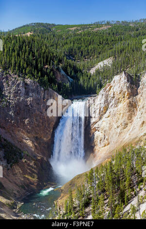 Yellowstone River ; Lower Falls (308') ; Le Parc National de Yellowstone, Wyoming, USA Banque D'Images