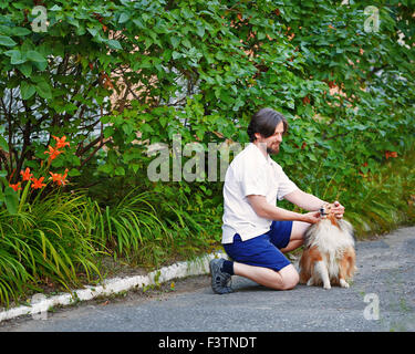 L'homme dans le parc avec son animal de race de chien de berger Shetland. Sheltie et une foule de la marche.