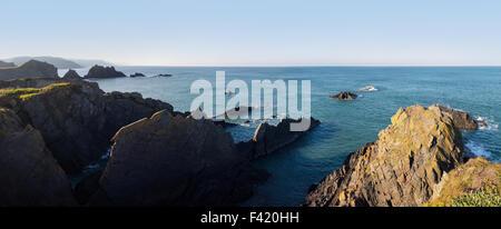 Vue panoramique sur les falaises rocheuses à Hartland Quay, North Devon, UK Banque D'Images