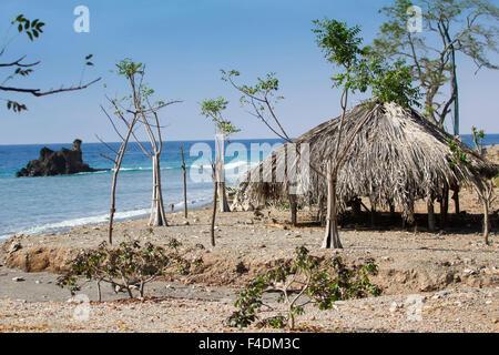 Plage tropicale au Timor oriental et une cabane vide pour fournir ombre
