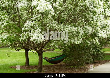 Une photographie d'un couple anonyme de vous détendre dans un hamac sous un arbre en fleur de cerisier Forsyth Park Banque D'Images