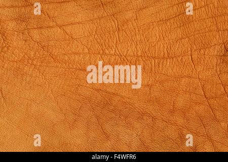 Cuir froissé marron texture background, haute résolution Banque D'Images