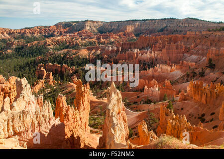 Vue depuis près de Sunrise Point, Bryce Canyon, Utah, USA Banque D'Images