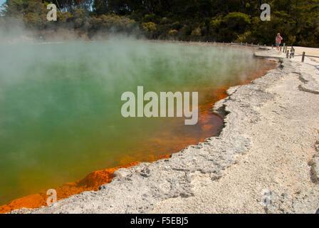 Piscine de Champagne, en zone géothermique Waiotapu, Rotorua, île du Nord, Nouvelle-Zélande, Pacifique Banque D'Images