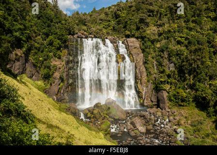 Marokopa Falls, karst de Waitomo, île du Nord, Nouvelle-Zélande, Pacifique Banque D'Images