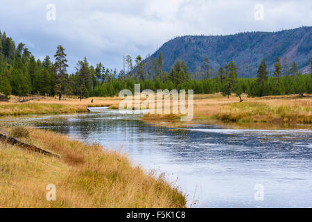 Madison River, le Parc National de Yellowstone, Wyoming, USA Banque D'Images
