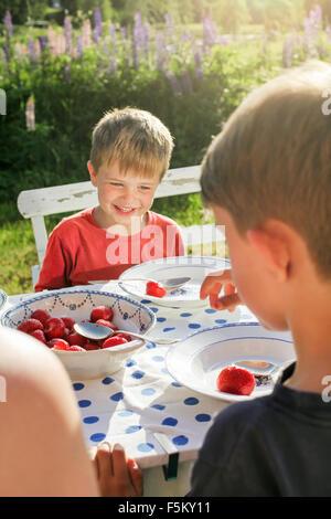 La Suède, Best Western Eden, Jarvso, Frères (4-5, 6-7) de manger les fraises au jardin Banque D'Images