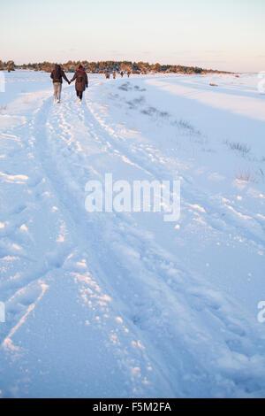 La Suède, Gotland, Faro, vue arrière du couple holding hands in field Banque D'Images