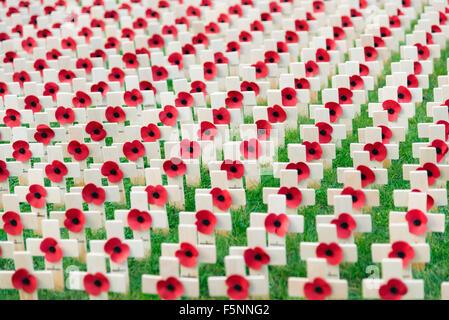 Dans un champ de coquelicots rouges du souvenir à l'extérieur de la cathédrale de Hereford, Royaume-Uni. Croix de Banque D'Images