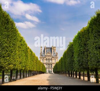 Jardin tuileries vista bordé d'arbres menant au musée du Louvre. Vue d'été de la terrasse du bord de l'eau à Paris, France
