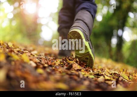 Balade en automne et hiver Banque D'Images