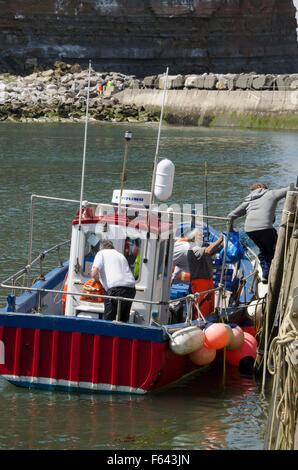 Sur une journée ensoleillée, 4 pêcheurs à la mer (hommes) décharger leurs prises à partir d'un bateau de pêche amarré Banque D'Images